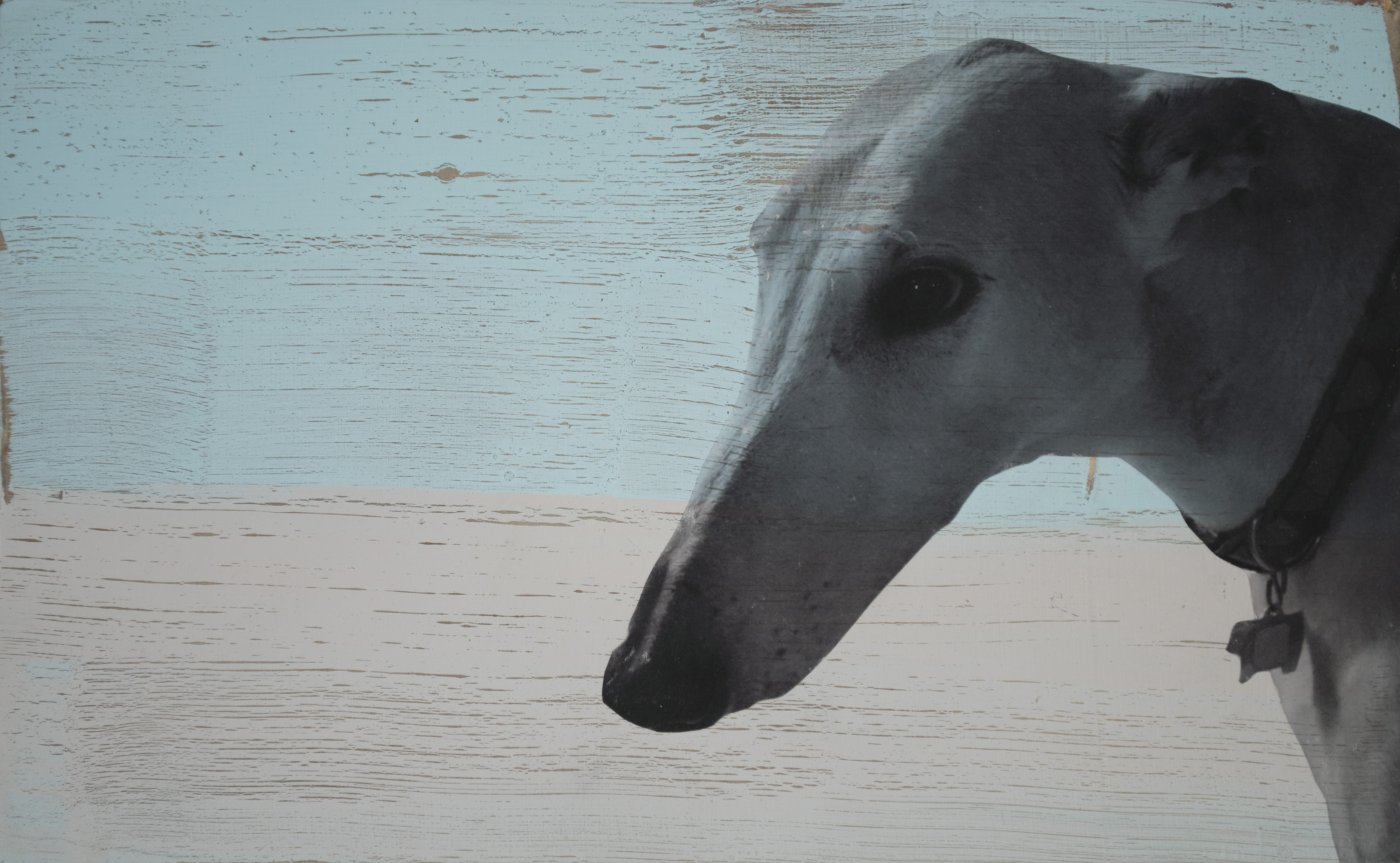 Holly Roberts: Greyhound with Blue Sky