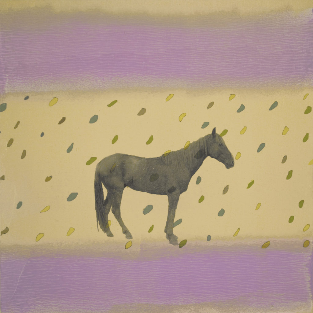 Holly Roberts: Horse with Rain and Purple