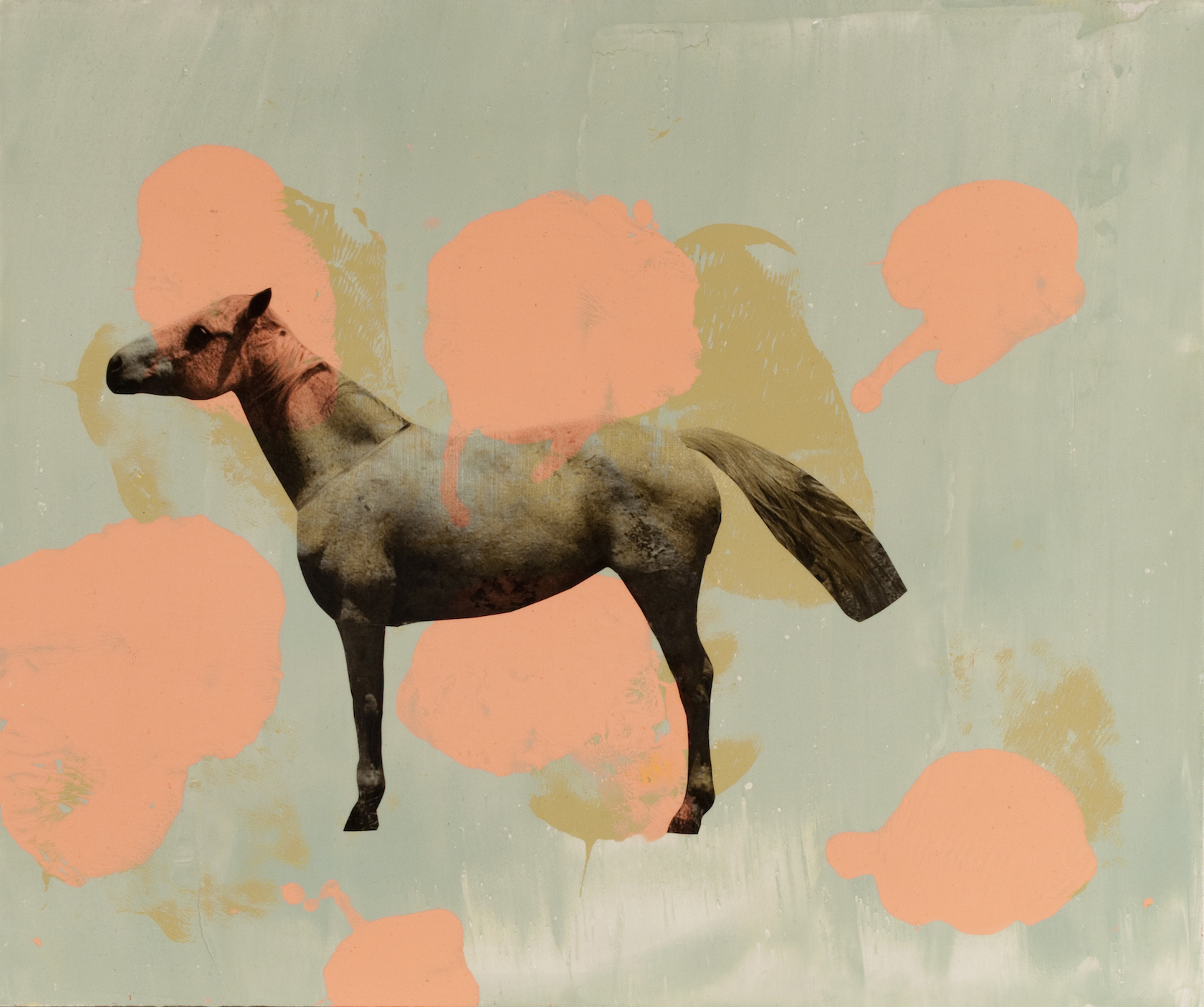 Holly Roberts: Horse with Spots