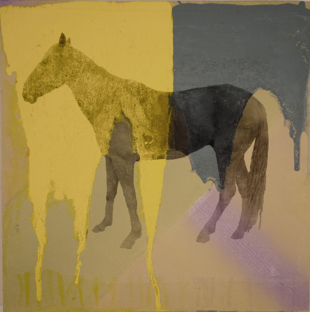 Holly Roberts: Horse with Yellow and Blue