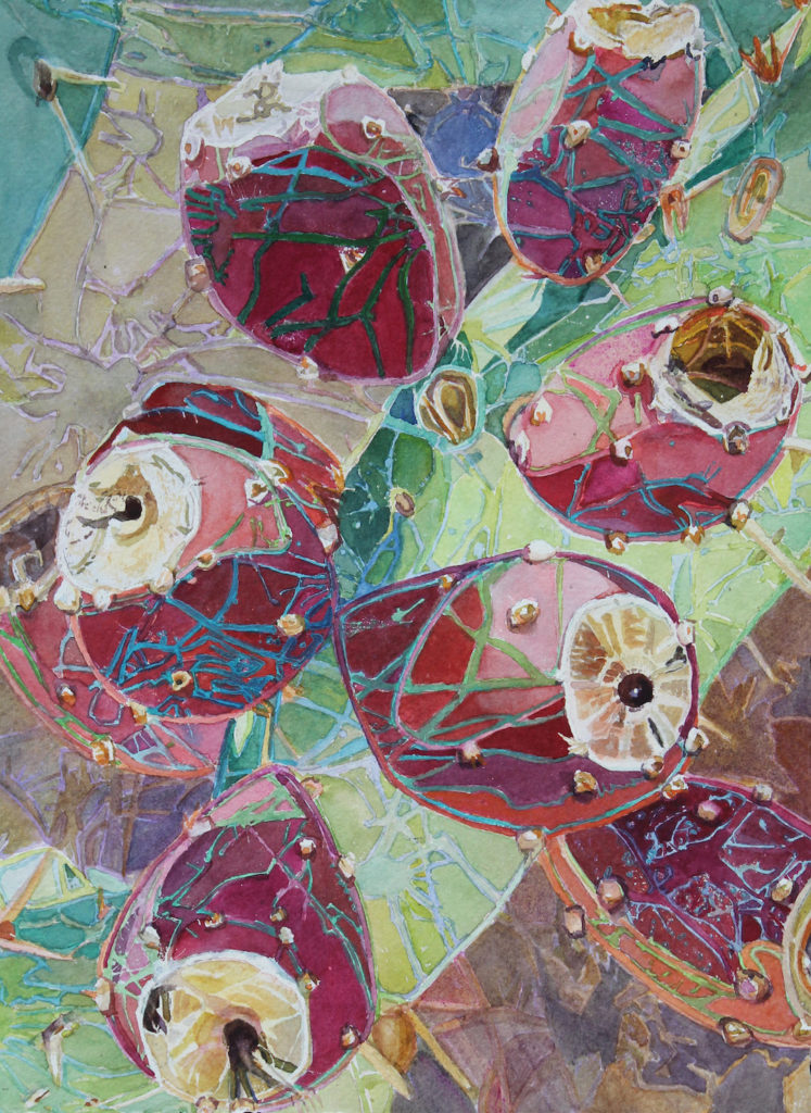 Susan Weeks: Cactus Diagona