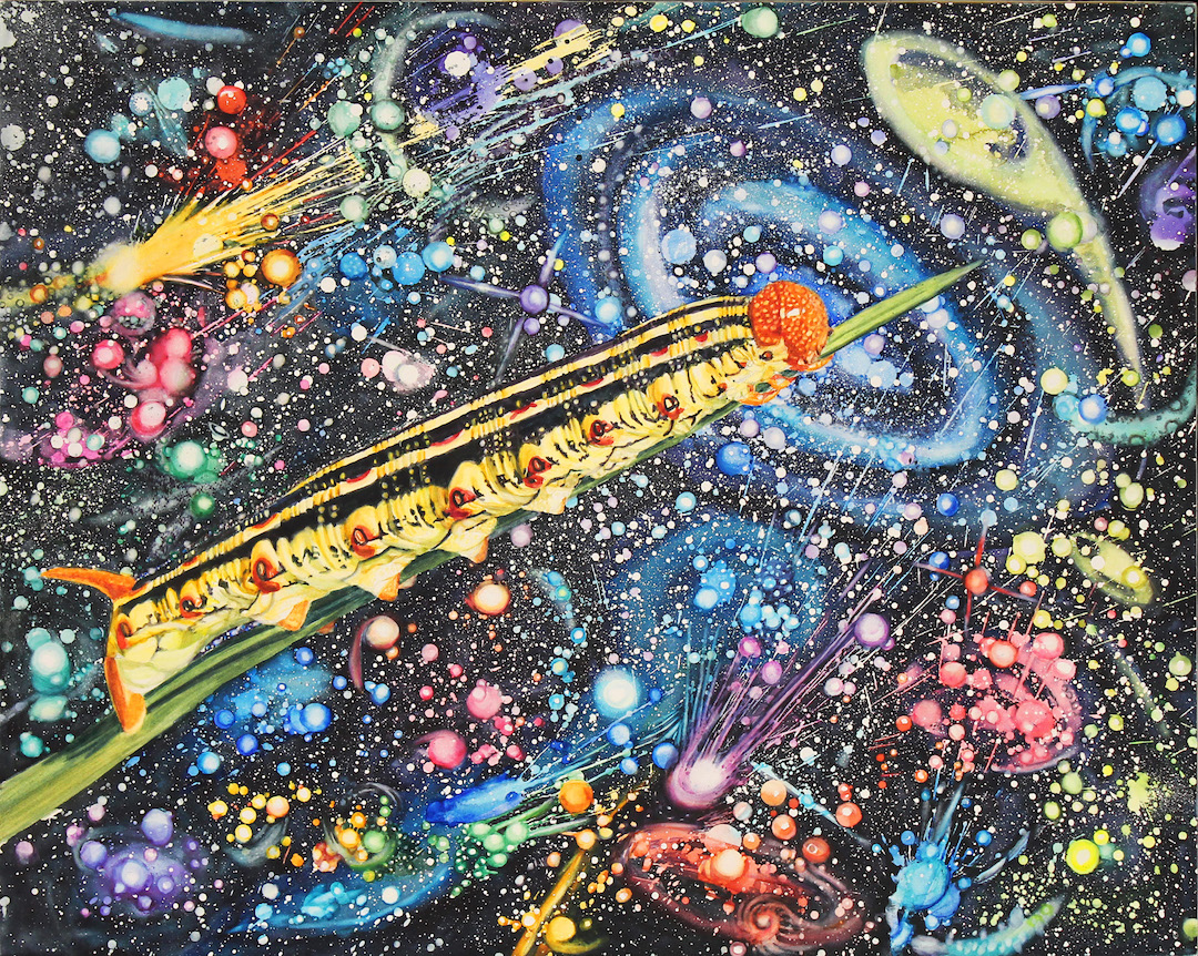 Susan Weeks: Caterpillar in Space