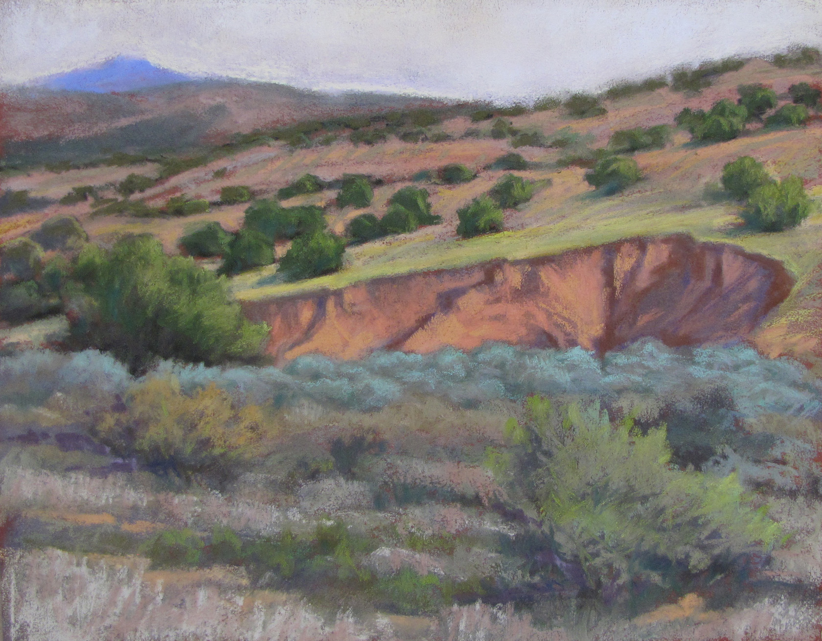 Nancy Silvia: Early Morning Arroyo