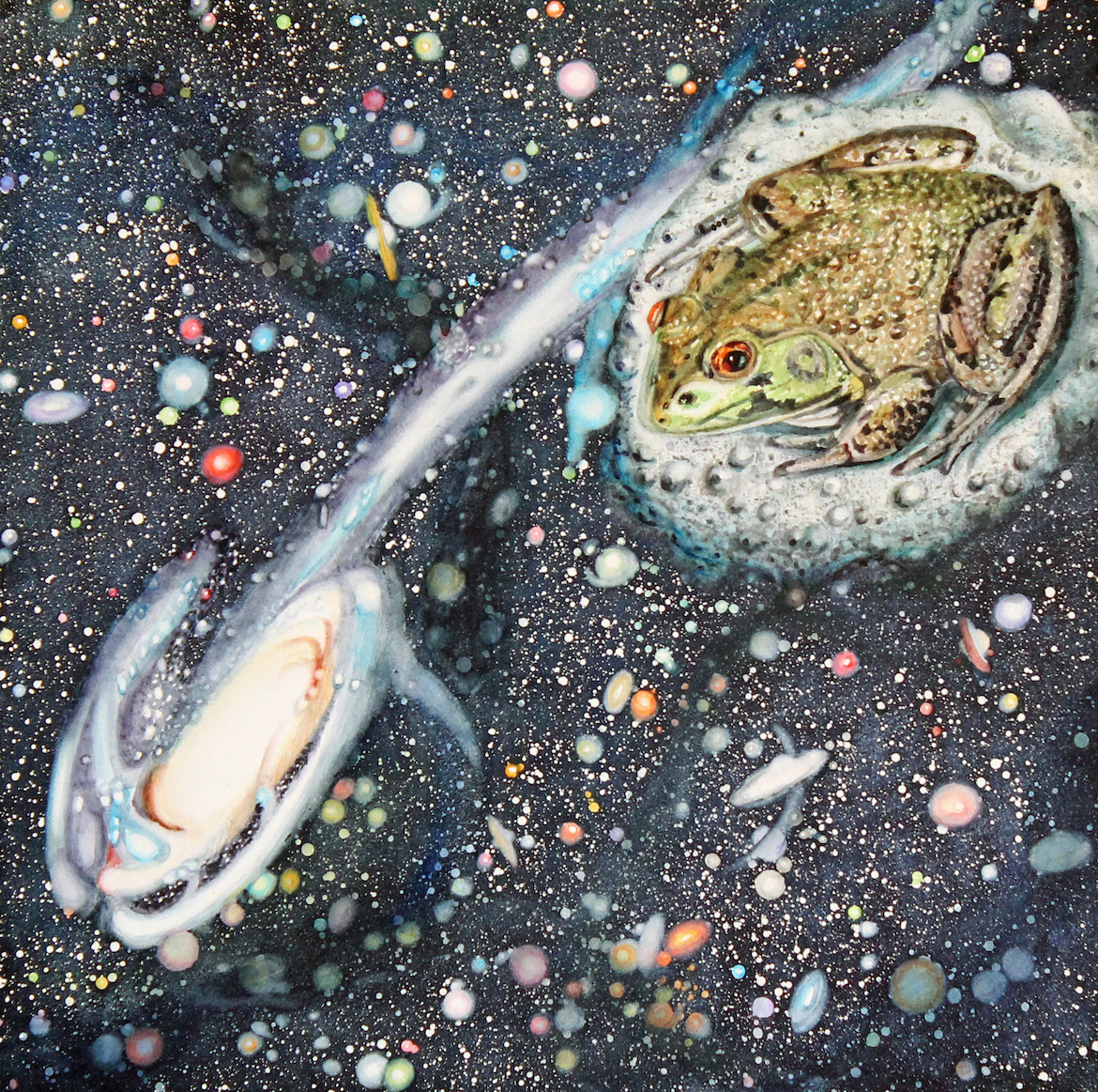 Susan Weeks: Freddie Pursues the Tadpole Galaxy