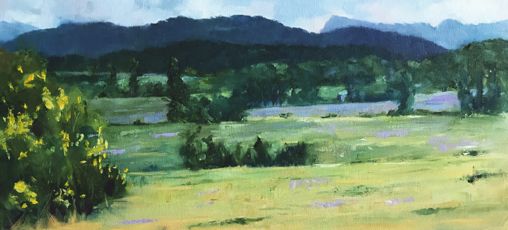 Carol Hopper: Mountain Valley