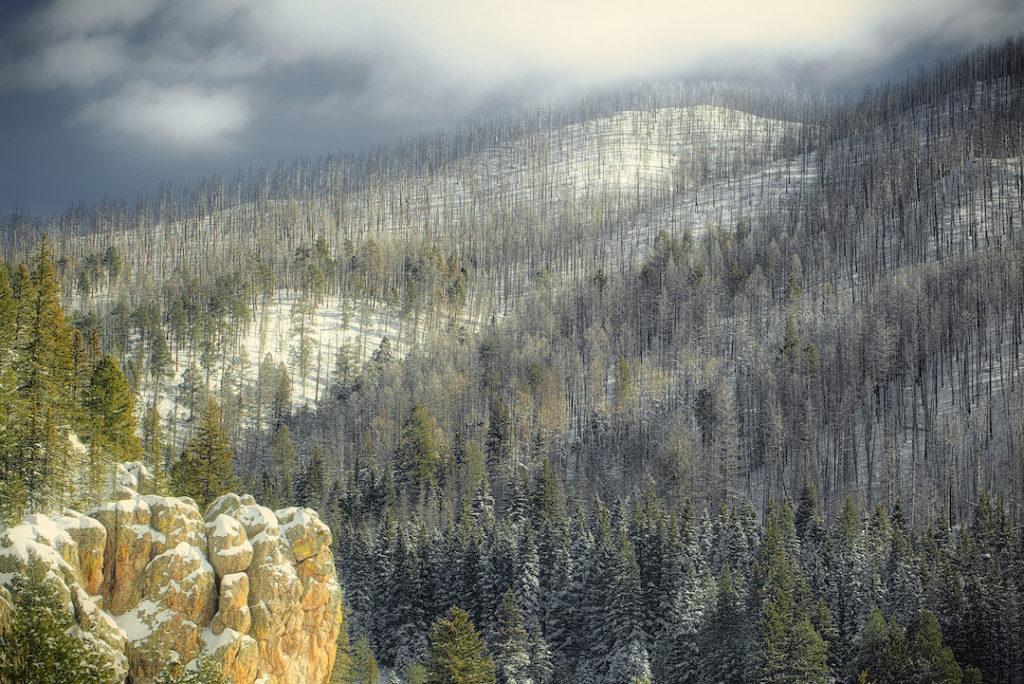 Kevin Black: Snow Squall, Near Los Alamos