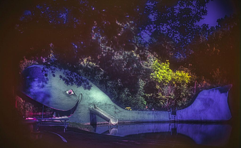 Kevin Black: Tulsa Blue Whale