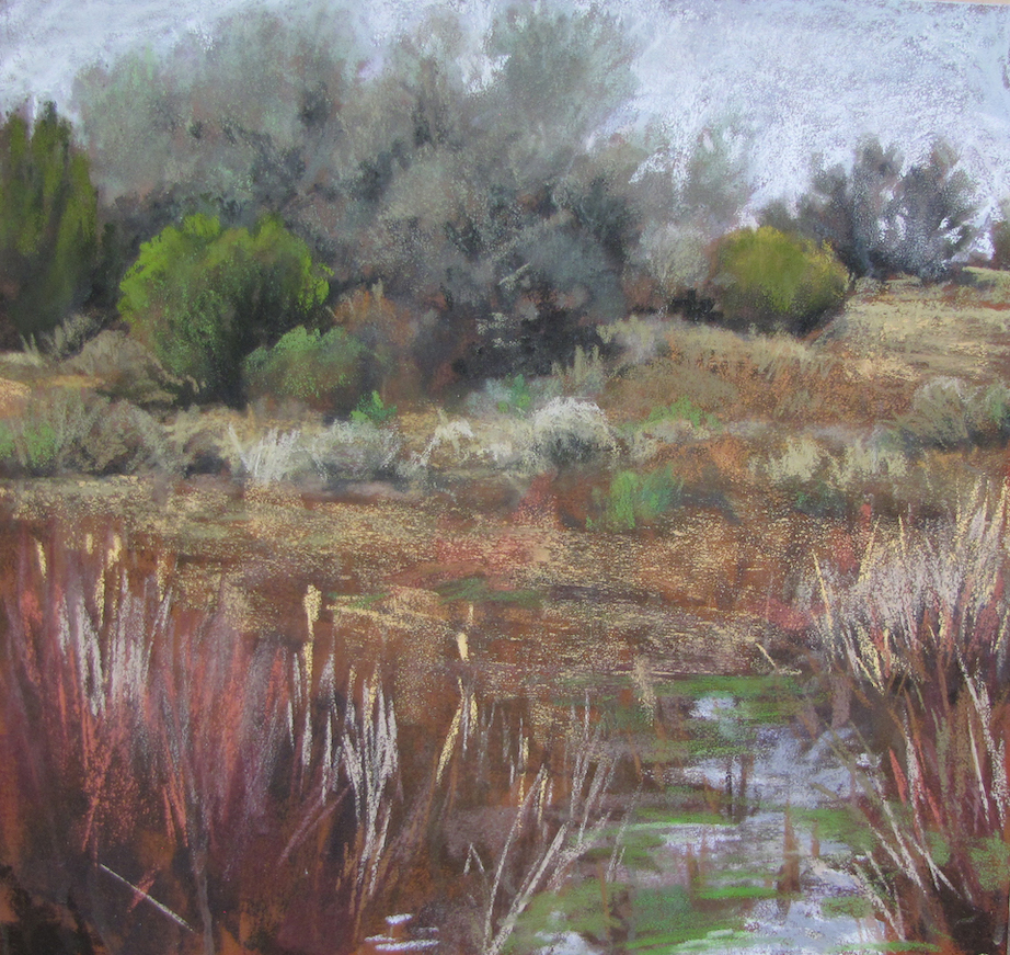 Nancy Silvia: Wetlands Springtime