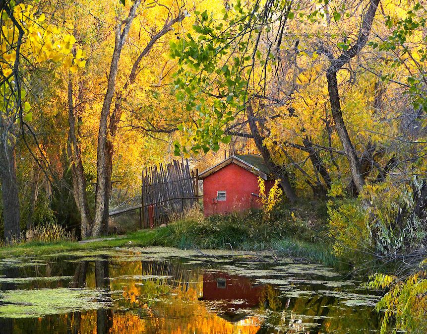 Carl Bogenholm: Sunrise Springs