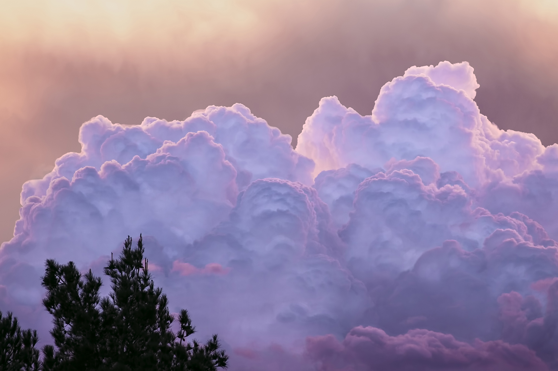 Mike Stephens: Cotton Candy Clouds