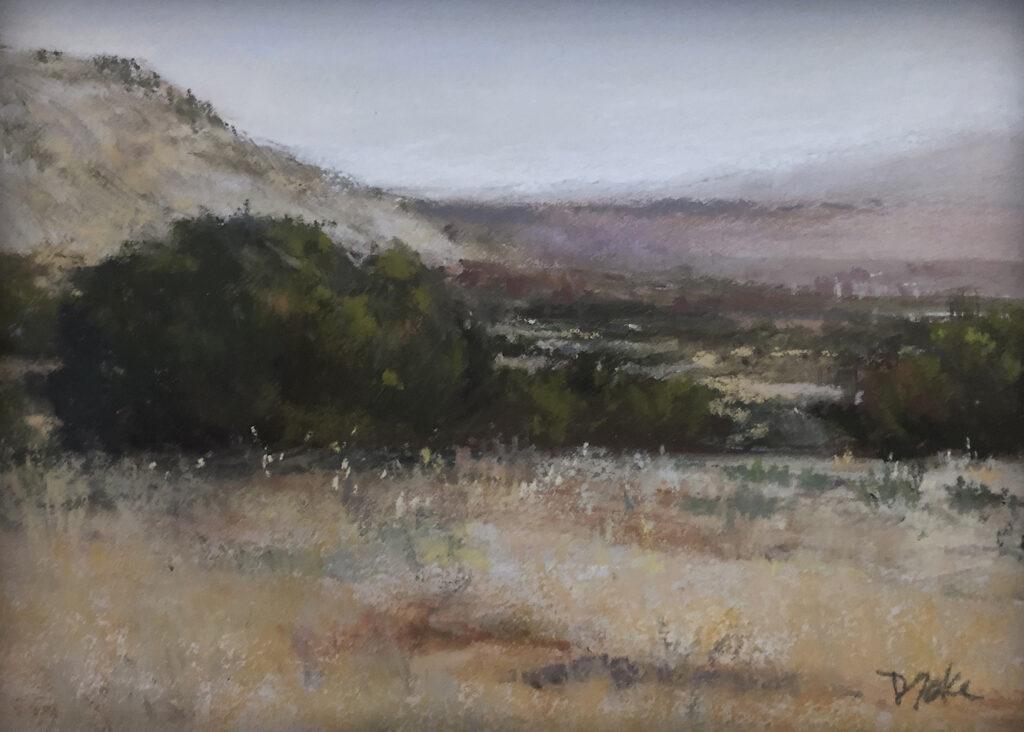 Marilyn Drake: Foothills Juniper