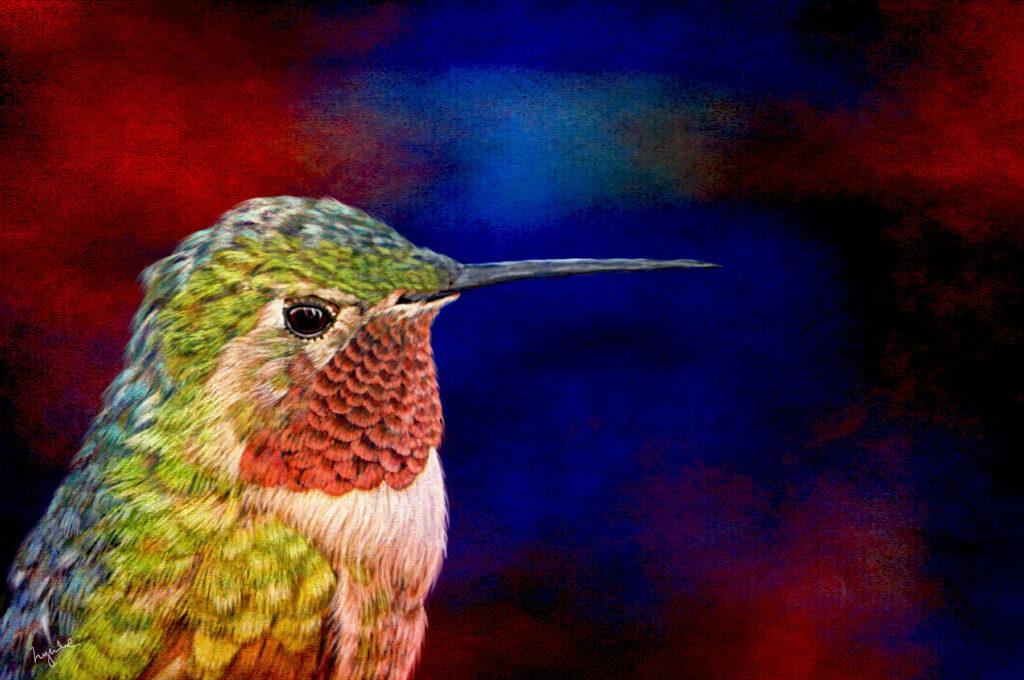 Lyndia Radice: Hummingbird