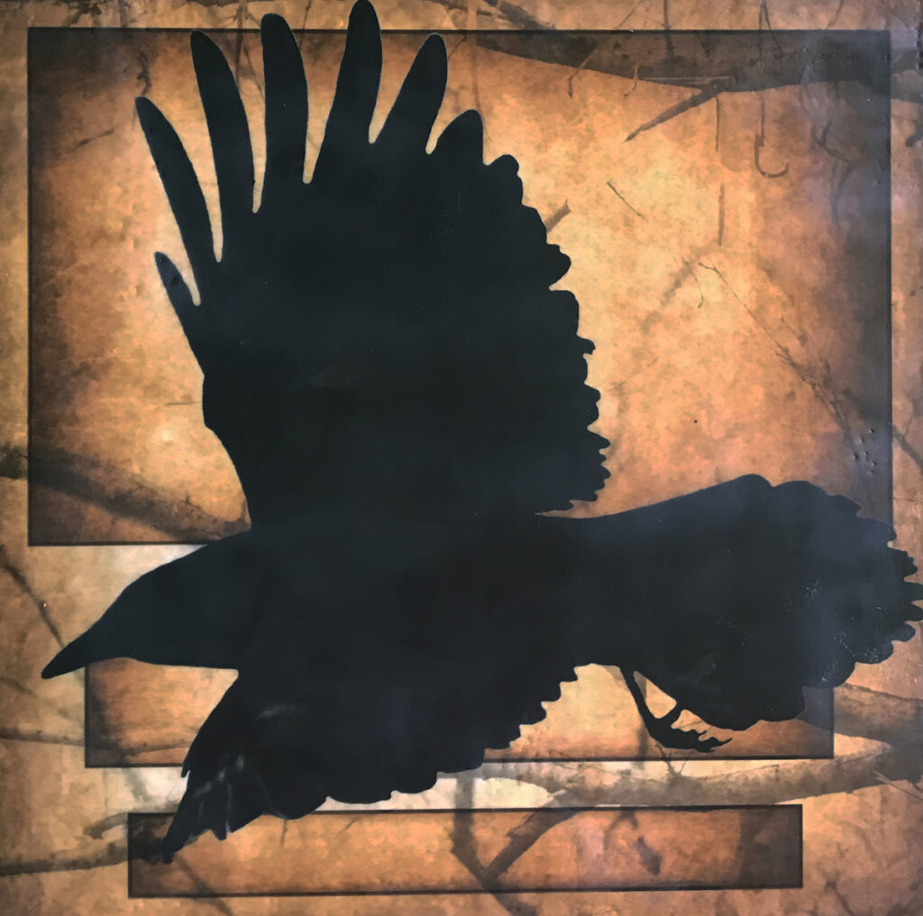 Andrea J. Sharon: Raven in Flight
