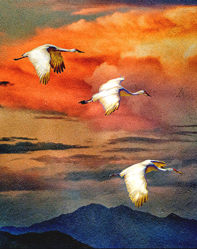 Lyndia Radice: Sun and Cranes Trio