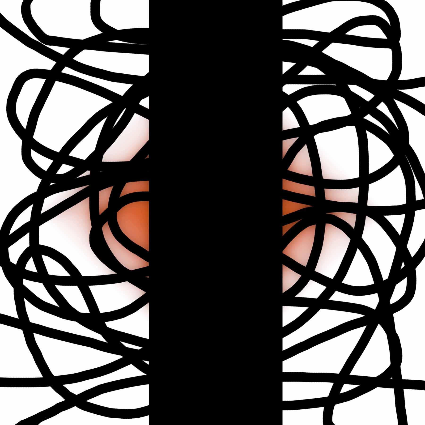 Thomas Leiblein: Black Lines