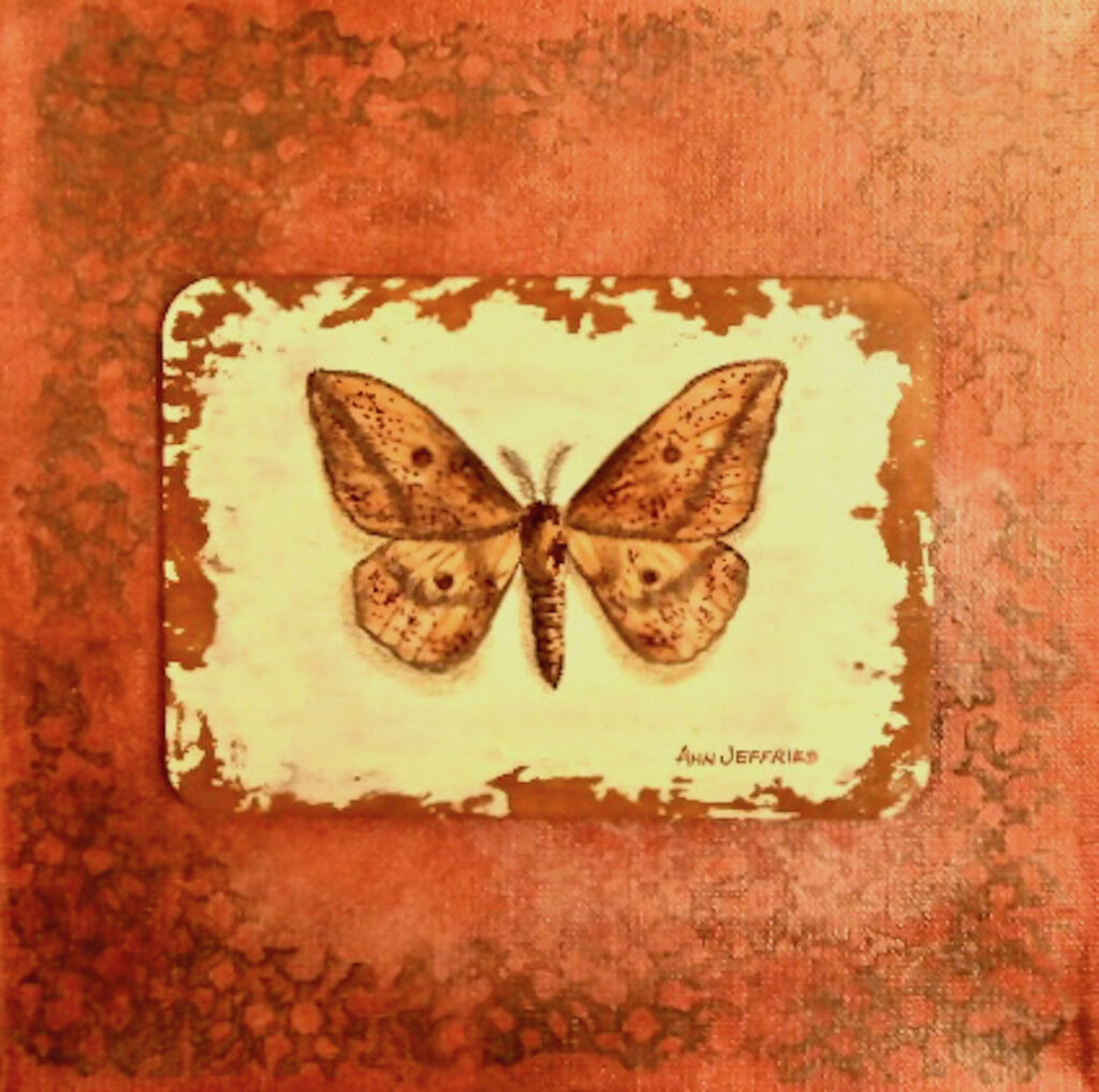 Ann Jeffries: Butterfly #13