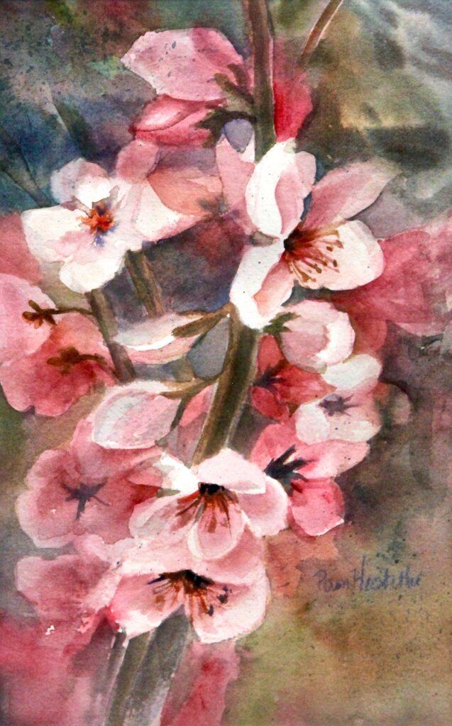 Pam Hostetler: Cherry Blossoms