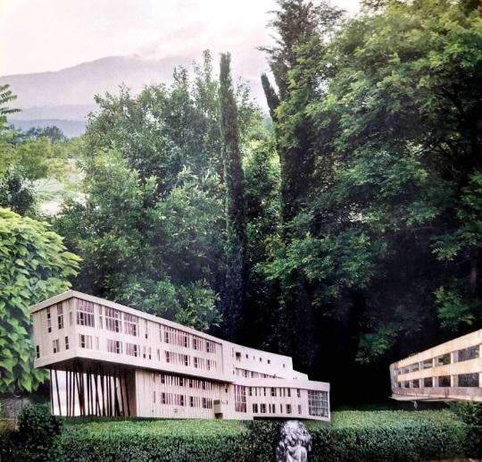 Elizabeth Burton: Dwelling