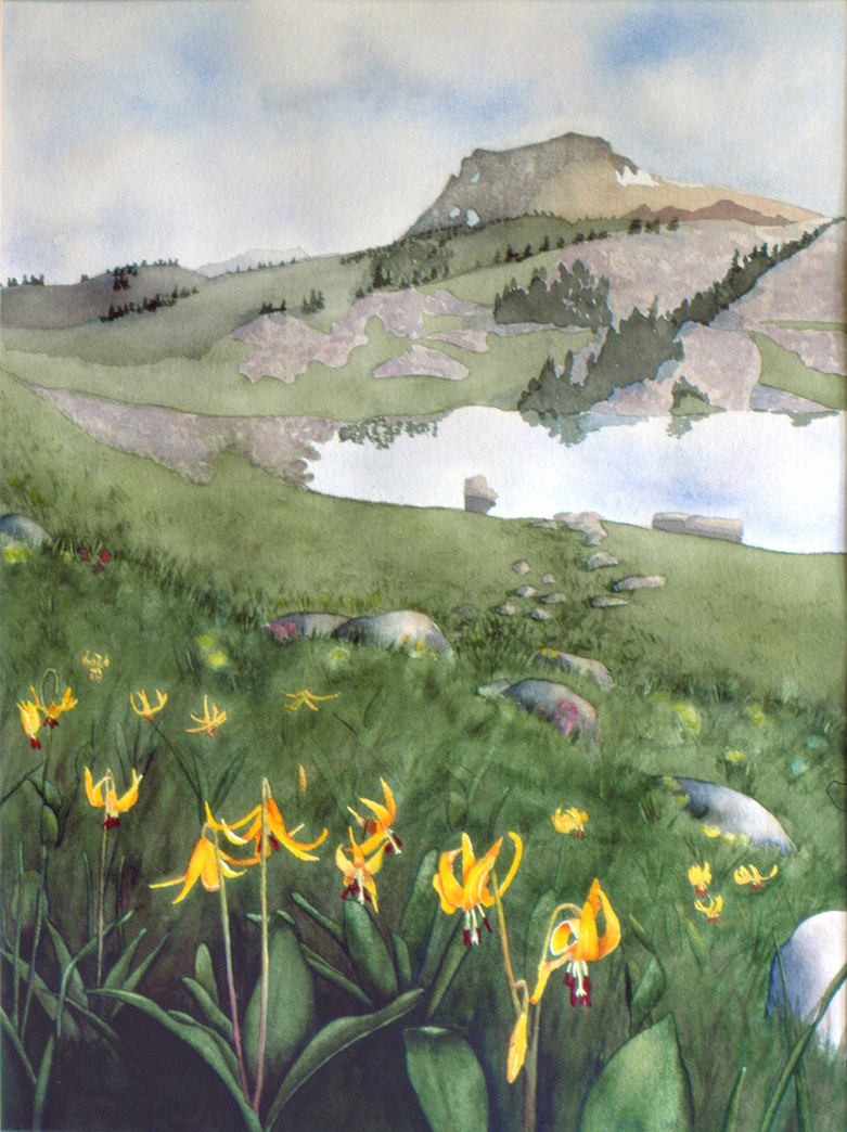 Jane Fritz: Lonesome Mountain