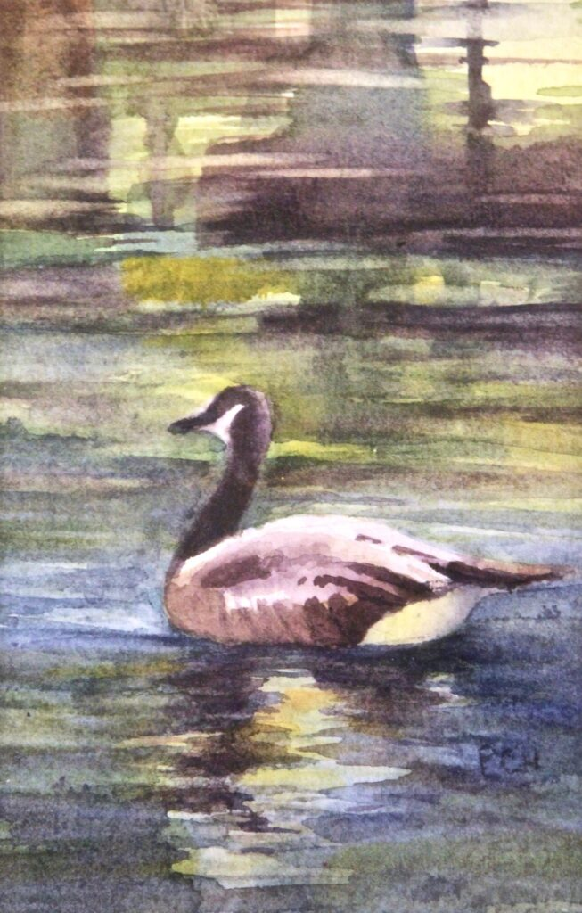 Pam Hostetler: Out for a Swim