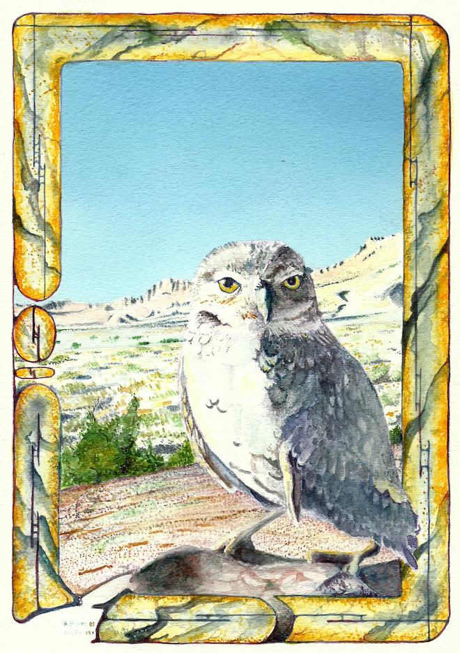 A. Leon Miler: Burrowing Owl 1