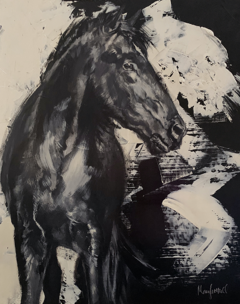 Mary Luttrell: Black Colt