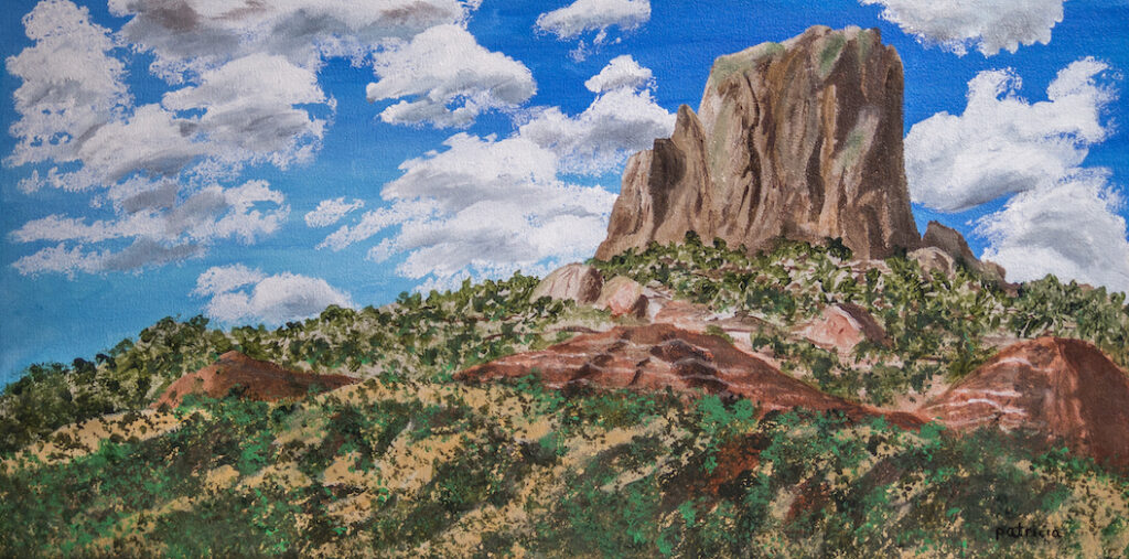 Patricia Gould: Desert Colors