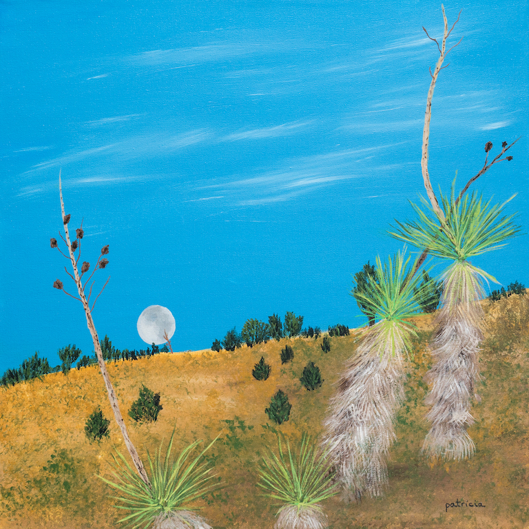 Patricia Gould: Desert Moon