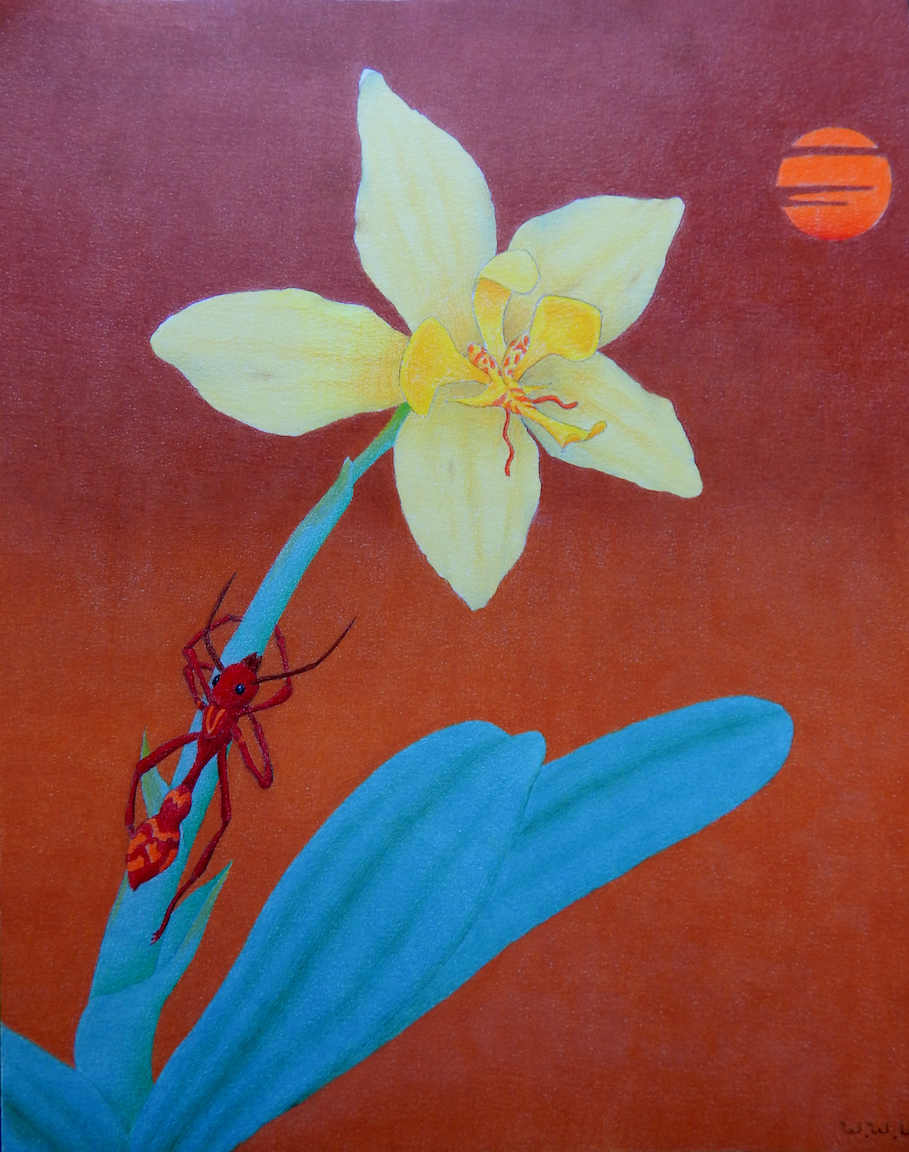 Wendell Unzicker: The Orchid and the Ant