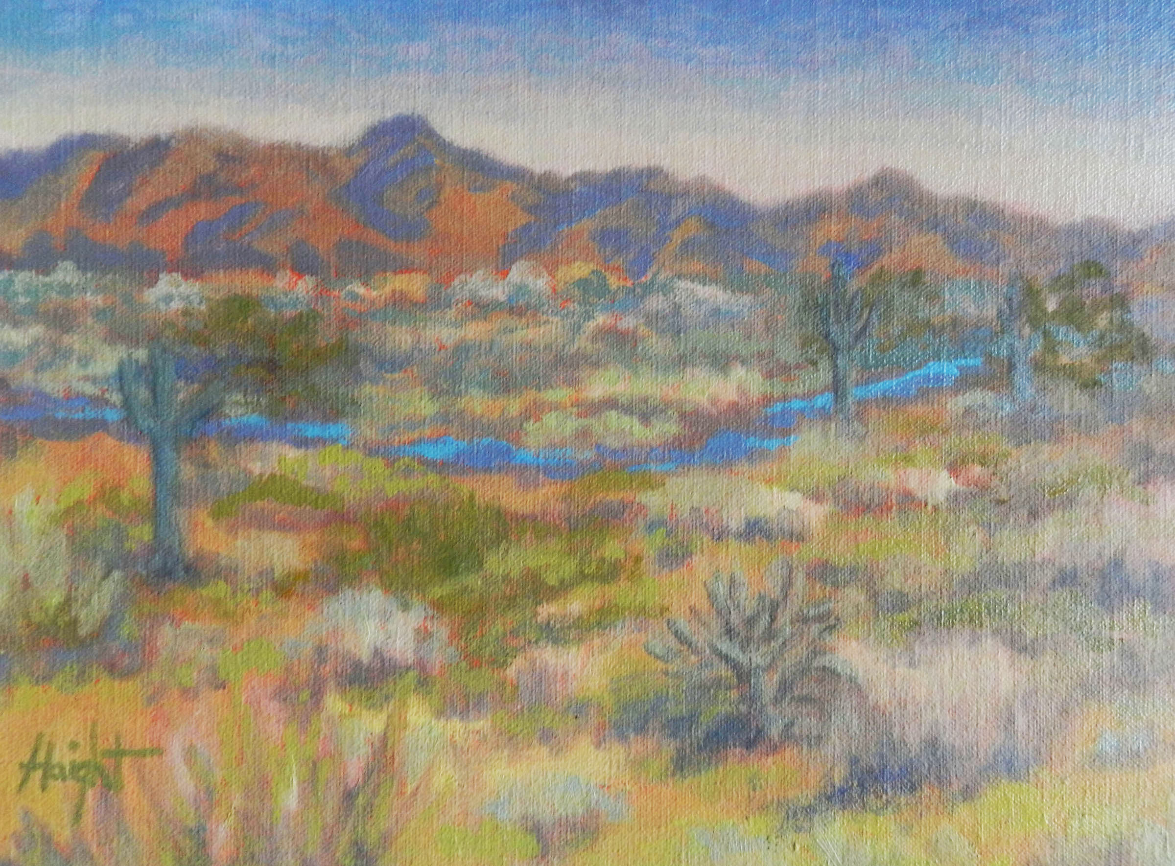 Cathy Haight: Arizona Fantasy