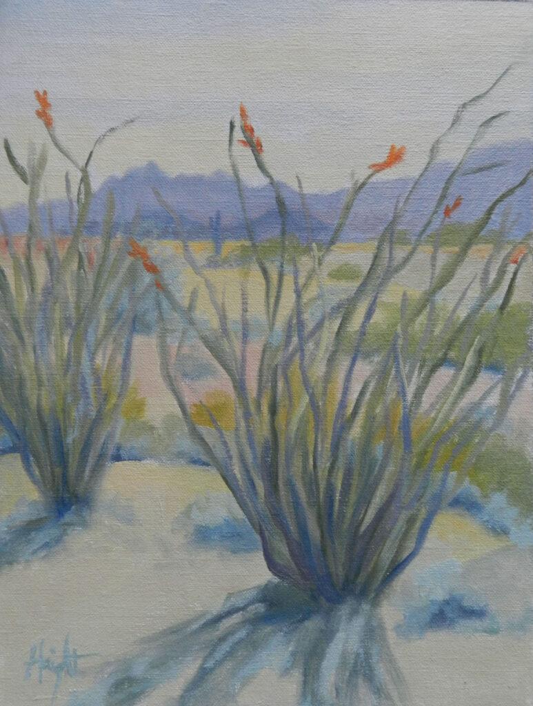 Cathy Haight: Dome Mountain Ocotillos