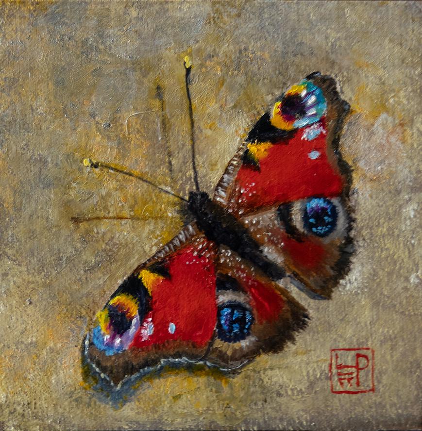 Lynne Patton: Peacock Butterfly
