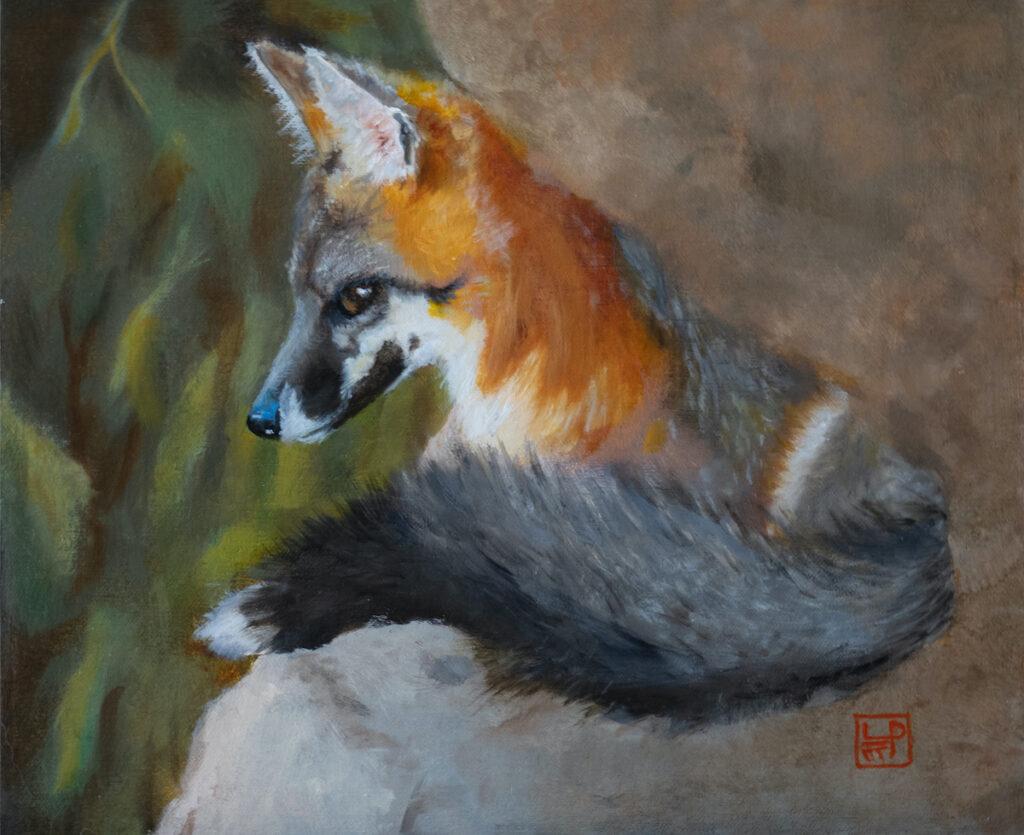 Lynne Patton: Red Fox Resting