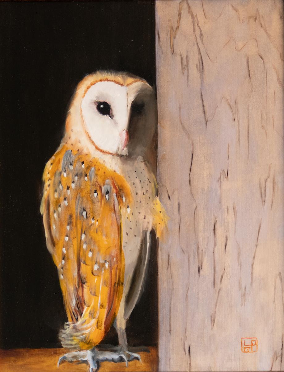 Lynne Patton: Shy Owl