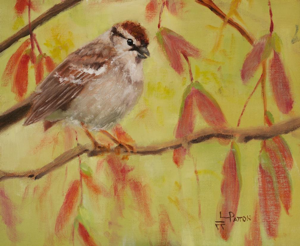 Lynne Patton: Sparrow