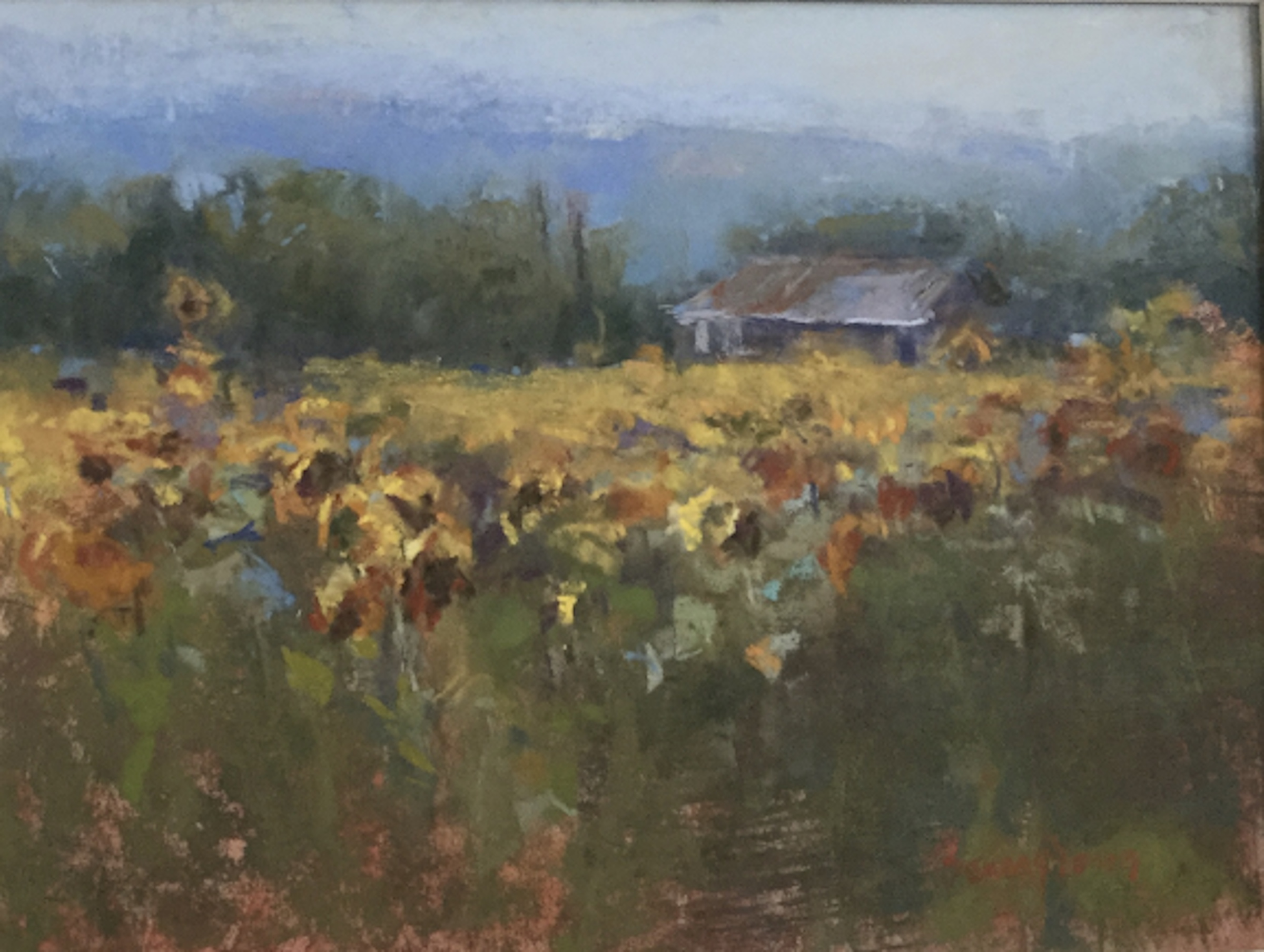 Seung Youn: Sunflower Field