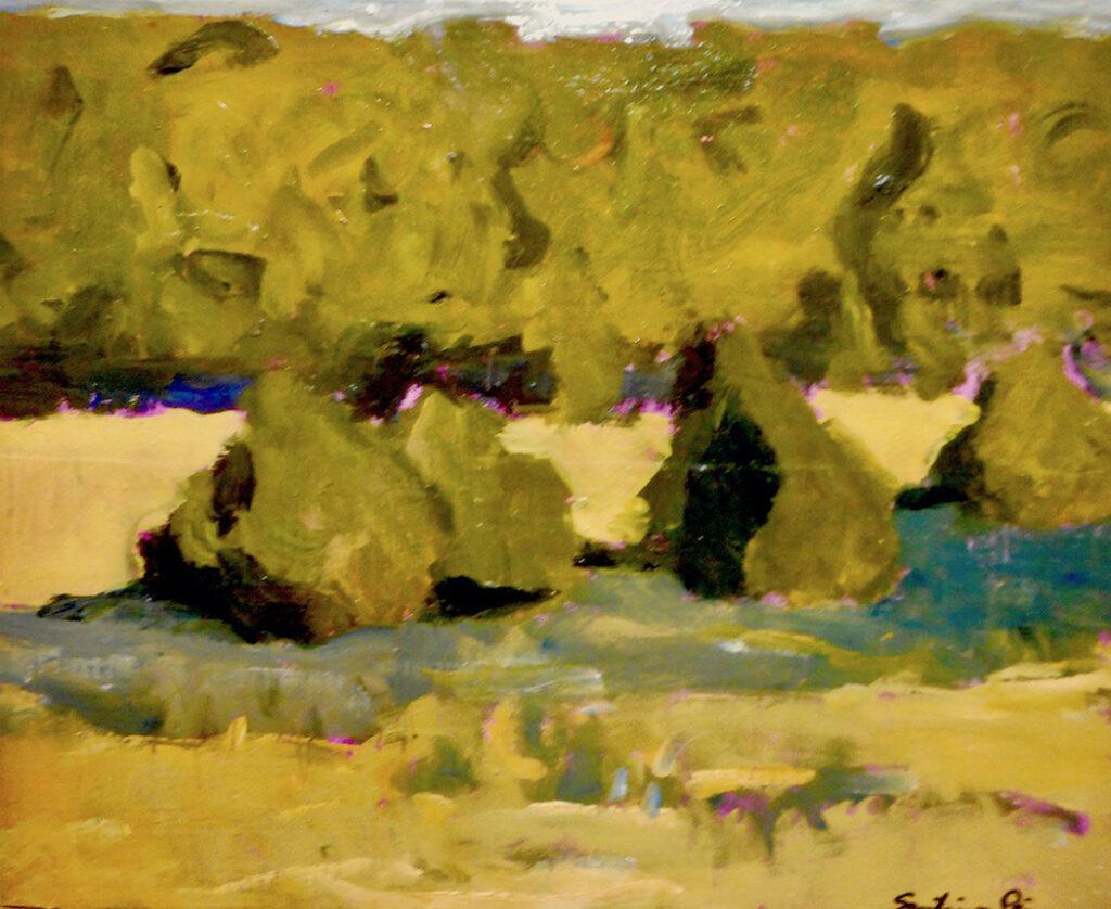 Santiago Perez: The Nice Meadow