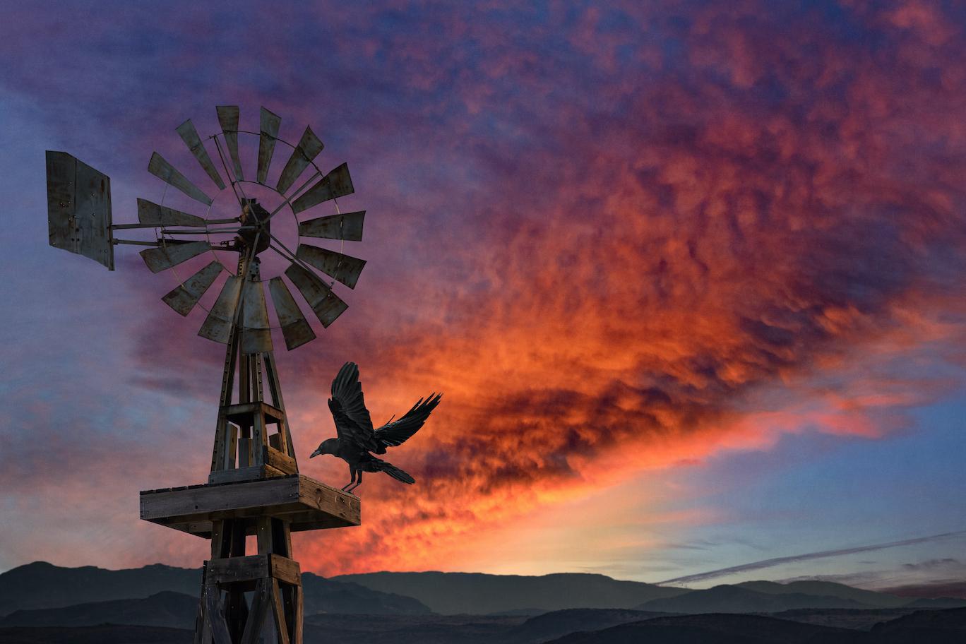 Dennis Chamberlain:  The Raven's Windmill