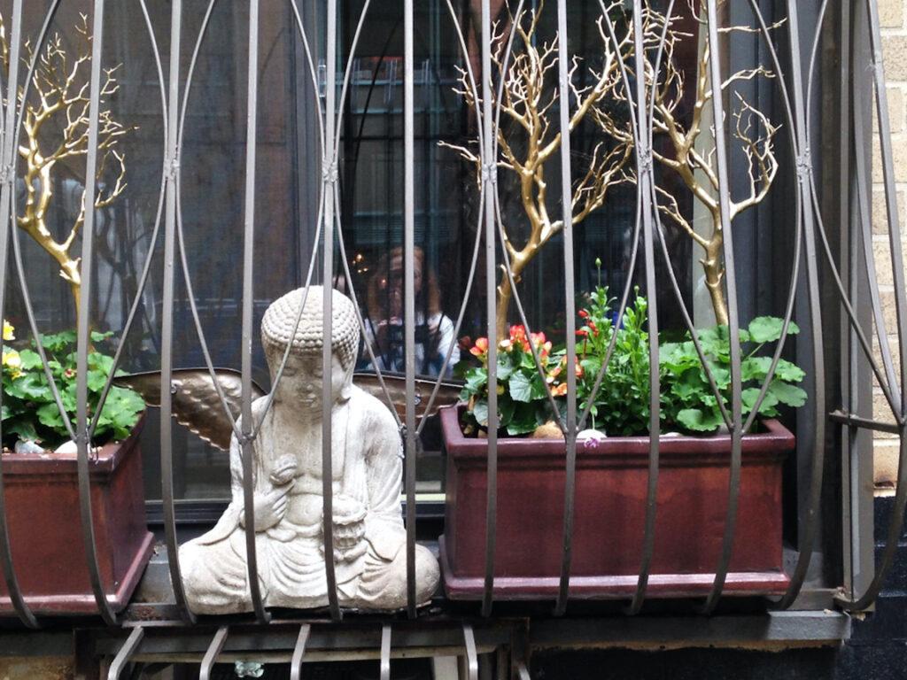 Irene Garden - Reflection Series: Window Buddha