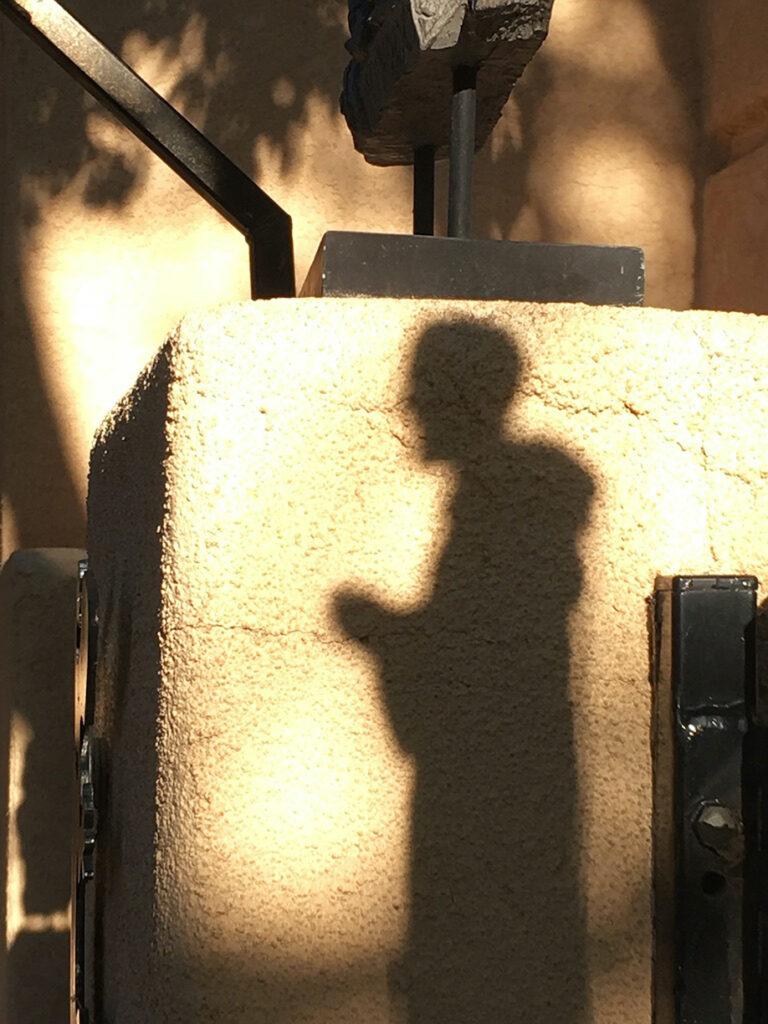 Irene Garden - Shadow Series: A Saintly Shadow