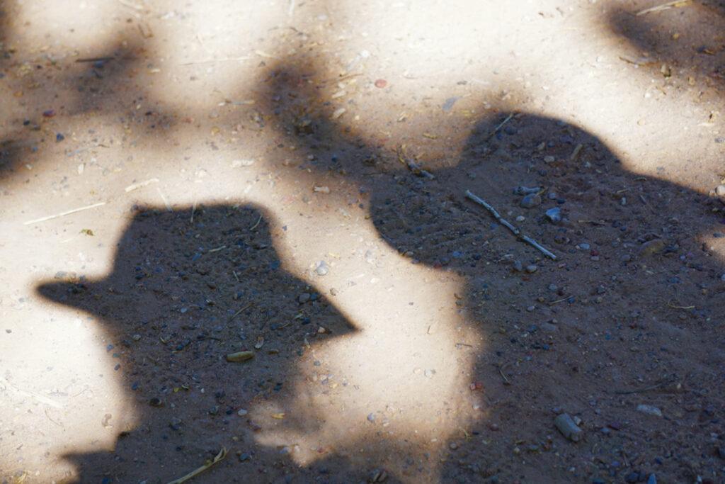 Irene Garden - Shadow Series: Friends On The Path