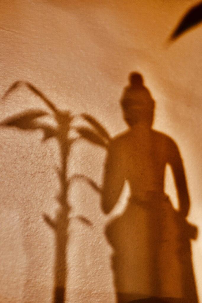 Irene Garden - Shadow Series: In Silence We Hear