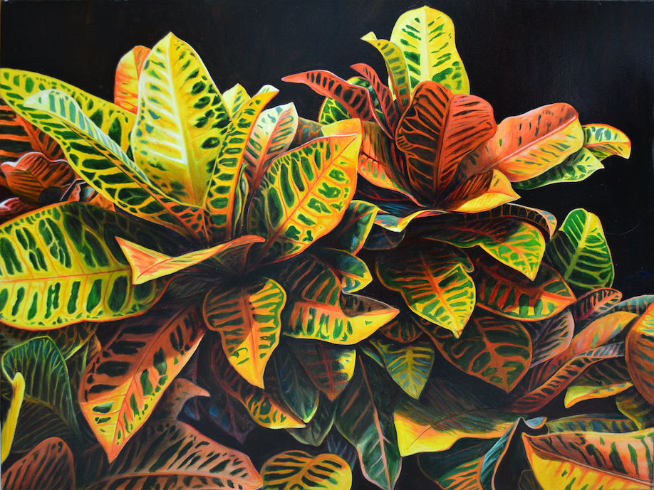 Sarah Hartshorne: They Knelt in the Leaves