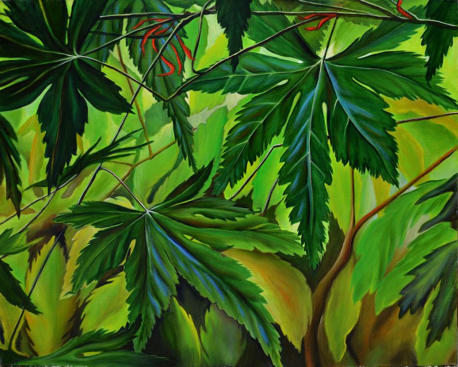Sarah Hartshorne: To Look Upon a Tree