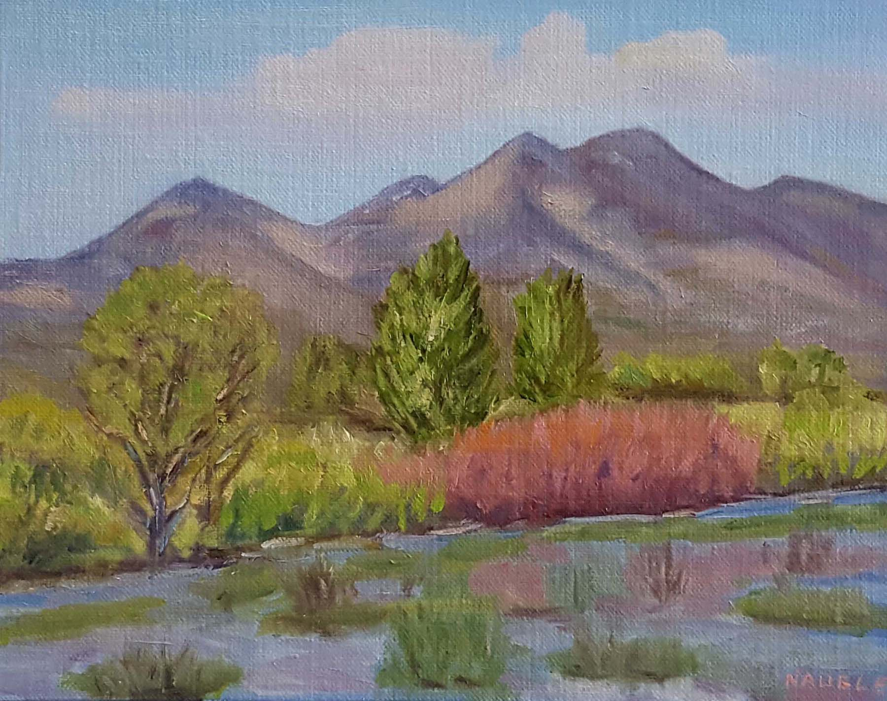 James Naugle: Bosque Del Apache Spring Colors