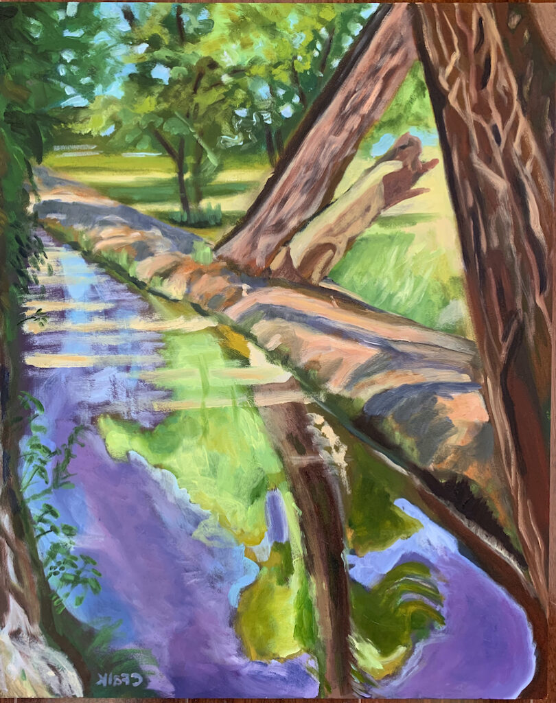 Connie Falk: Hubbell House Acequia