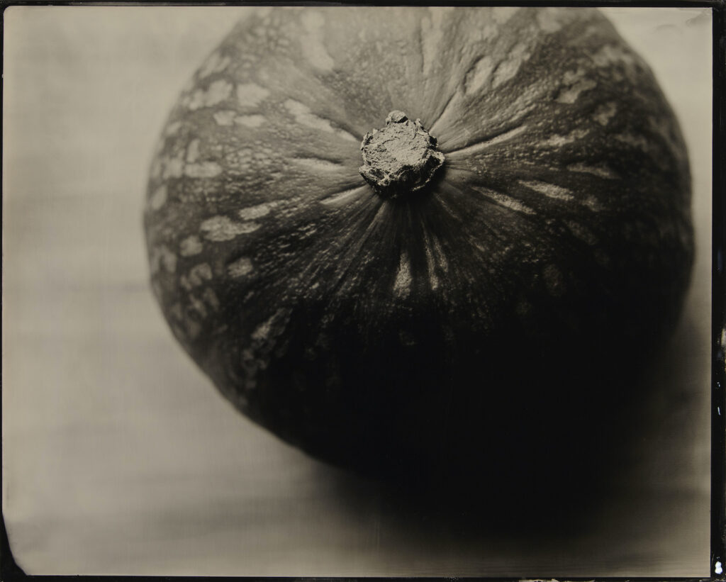 Kevin Black: Kabocha Squash Outside