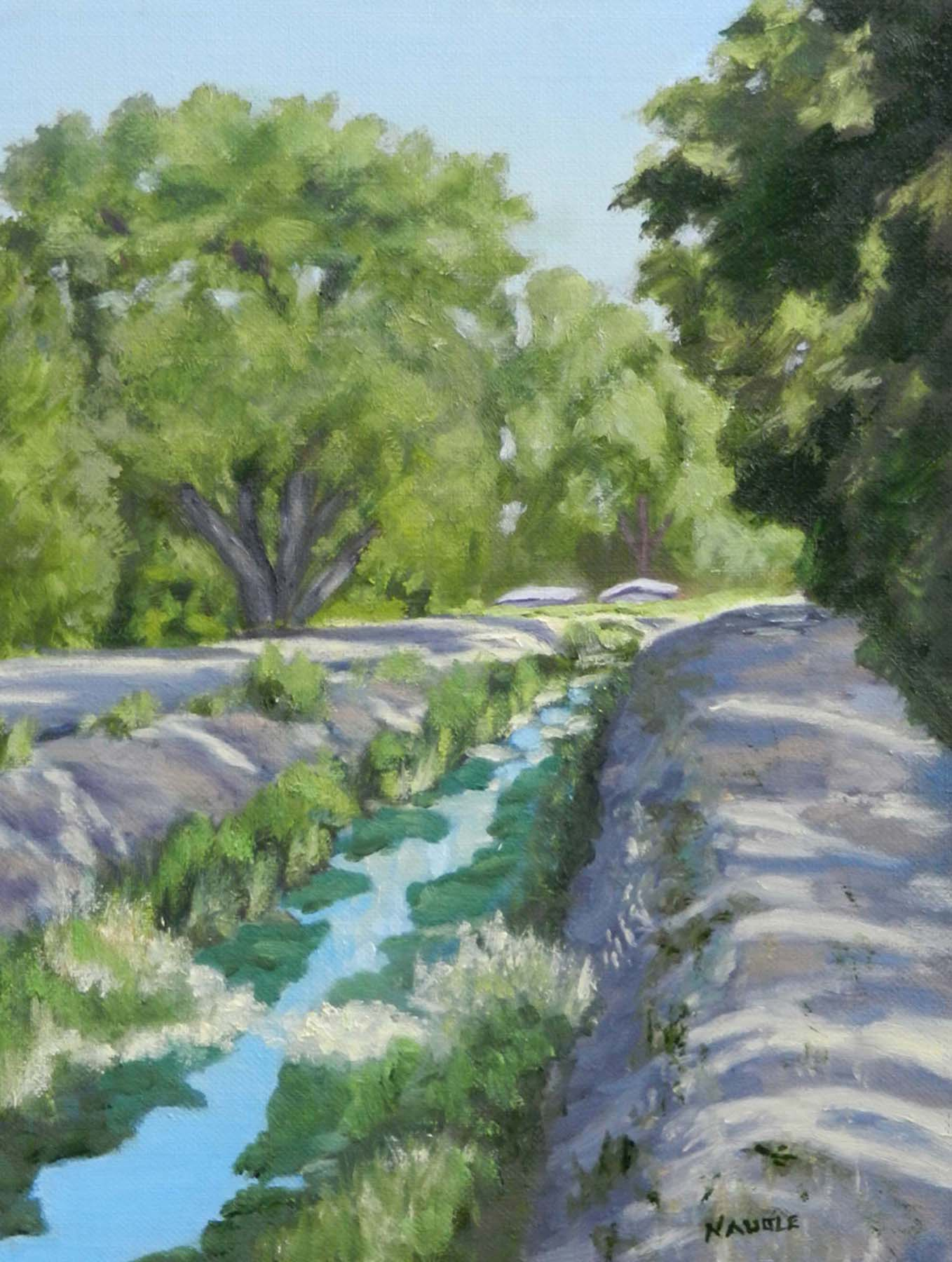 James Naugle: South Valley Acequia Morning View