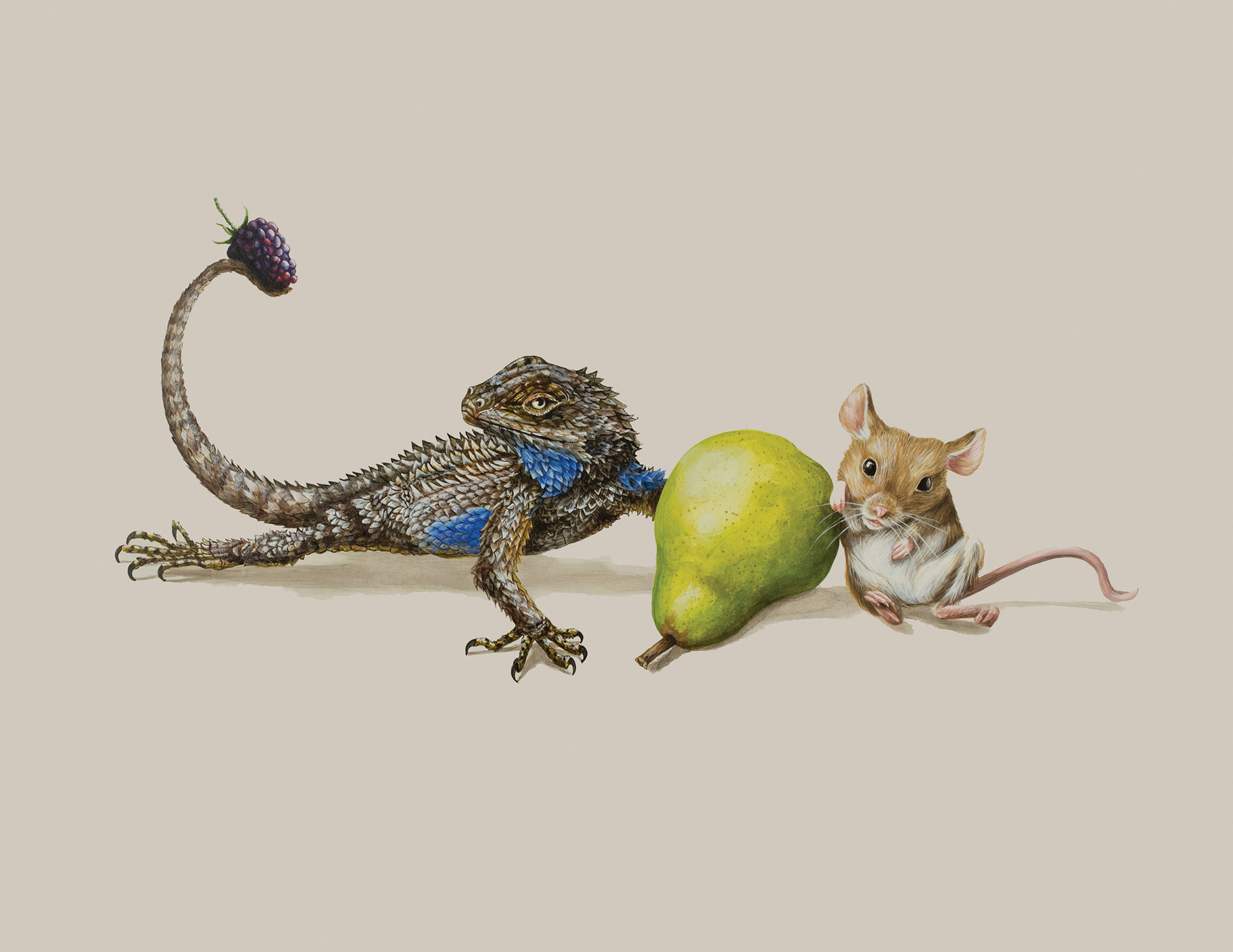 Tricia George: The Bluebellied Lizard and The Mouse