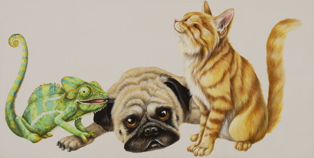 Tricia George: The Chameleon, The Pug and The Kitten